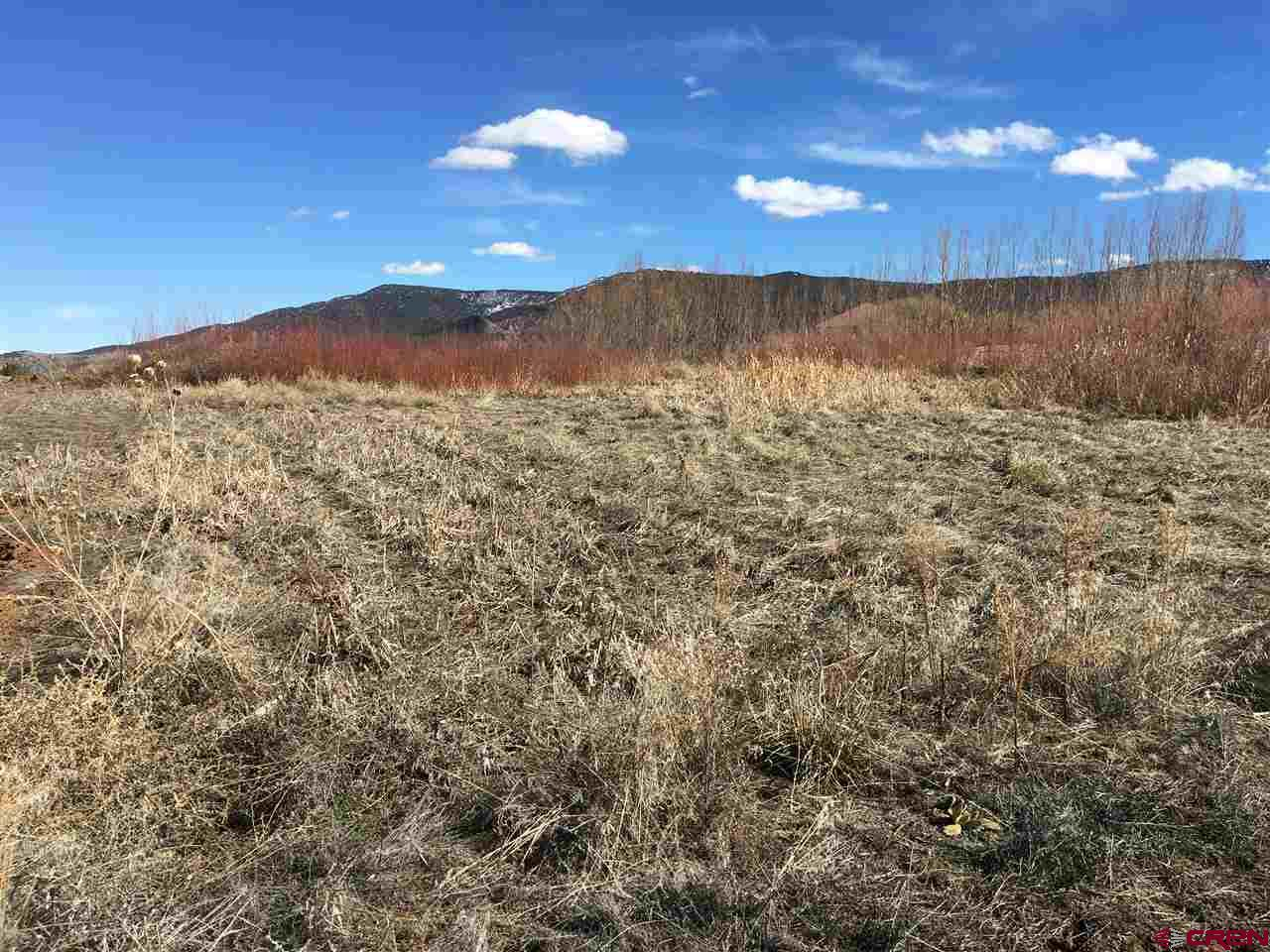 Land for Sale in Arboles, CO