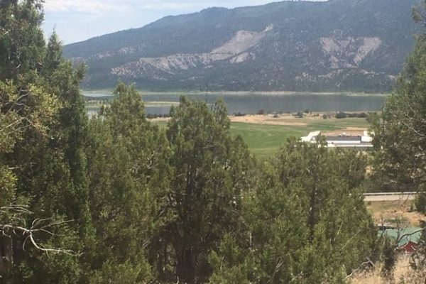 44 & 64 Summit Swing, Arboles CO Real Estate